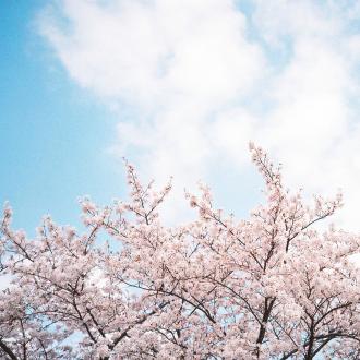 3月 ・4月美容トピックスまとめ