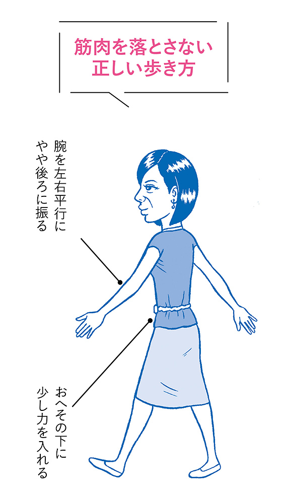 姿勢が悪くなるのは<br /> 骨と筋肉の両面から